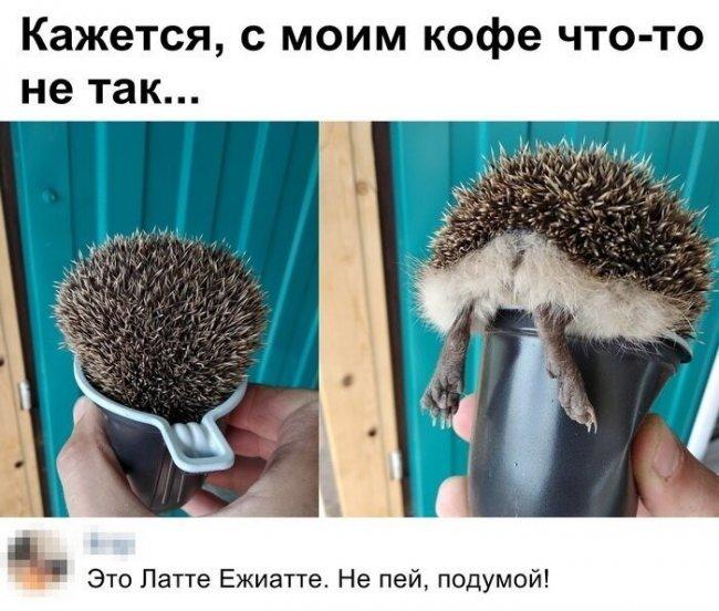 auto_01-591559494640_mixmovie_ru_2019052658_00003.jpg
