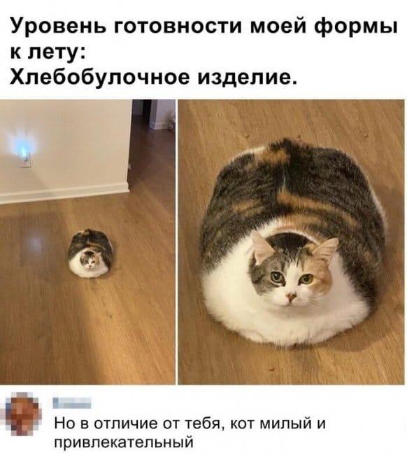 auto_01-591559494659_mixmovie_ru_2019052658_00087.jpg