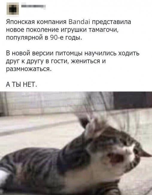 auto_01-591559494666_mixmovie_ru_2019052658_00060.jpg