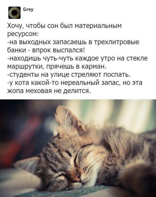 auto_02-001559494551_mixmovie_ru_2019052648_00018.jpg