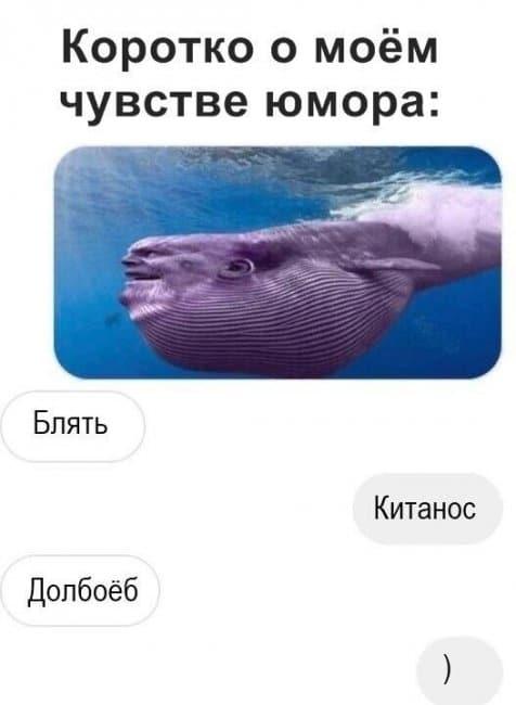 auto_02-001559494610_mixmovie_ru_2019052648_00088.jpg