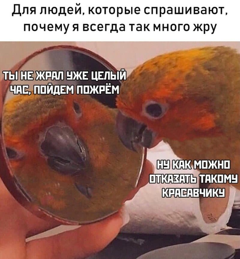 auto_07-22podborka_vecher_22_8_800x860.jpg