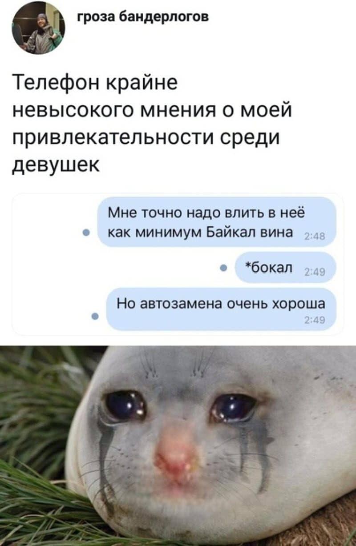 auto_07-22podborka_vecher_24_7_800x1228.jpg