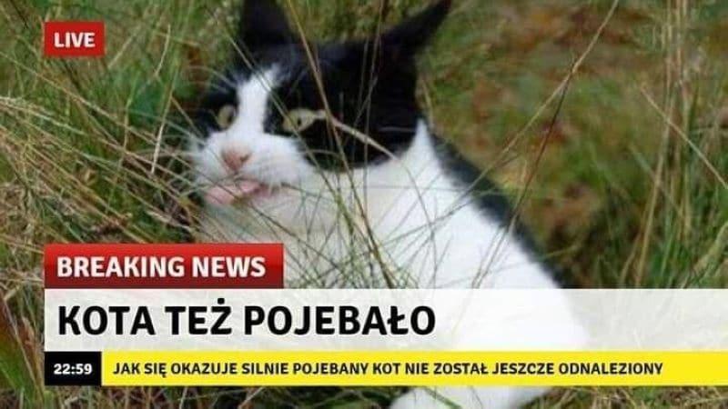 урок польский