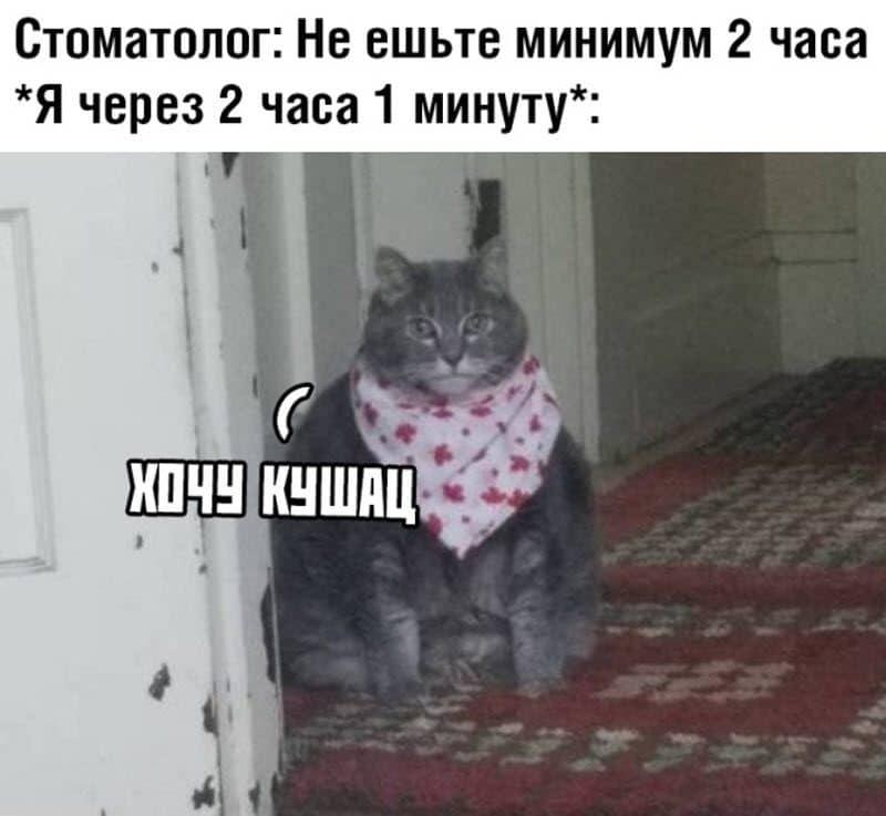 auto_08-16podborka_vecher_15_7_800x737.jpg