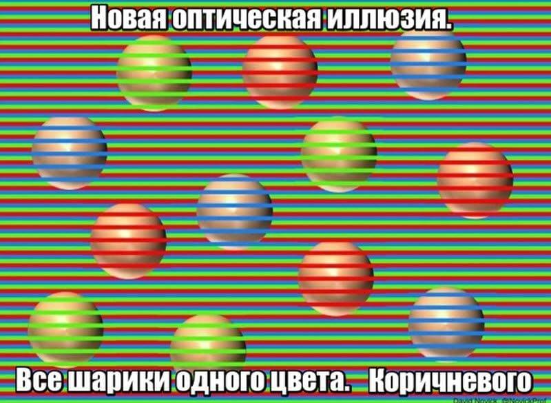 auto_09-281_29_12_800x585.jpg