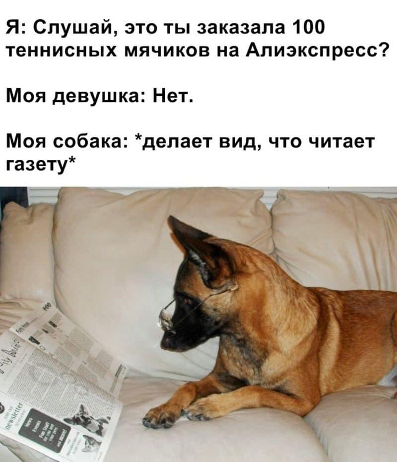 auto_12-121_16_9_800x931.jpg