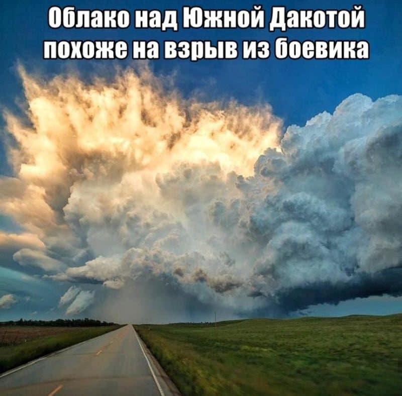 auto_12-121_20_8_800x788.jpg