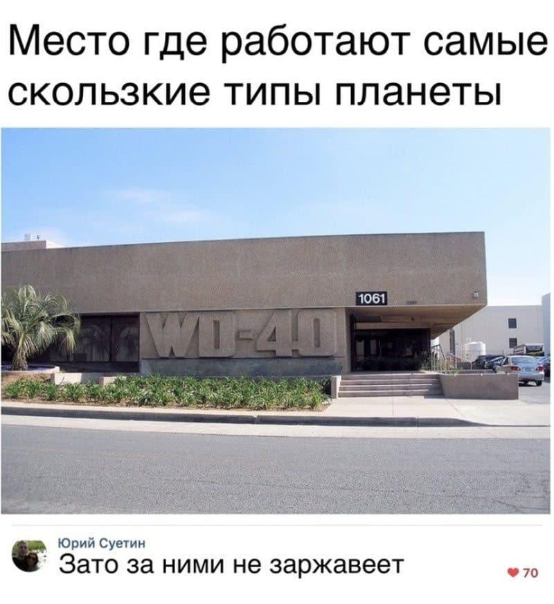 auto_12-121_22_9_800x872.jpg