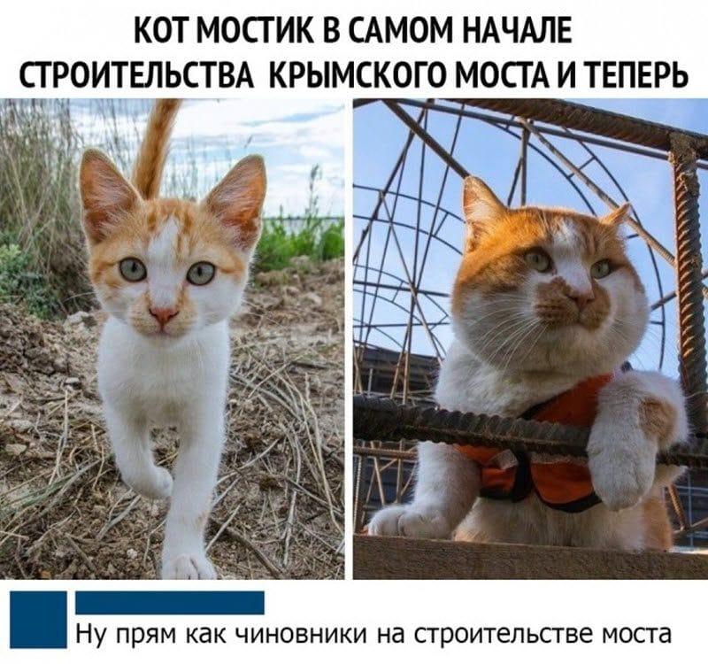 auto_12-12podb_vecher_05_6_800x750.jpg