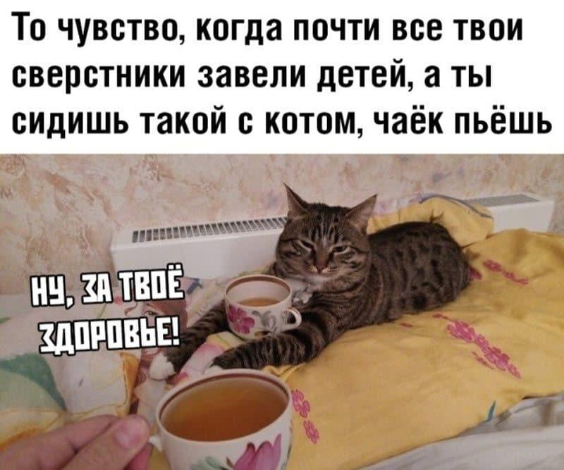 auto_12-12podb_vecher_13_6_800x667.jpg
