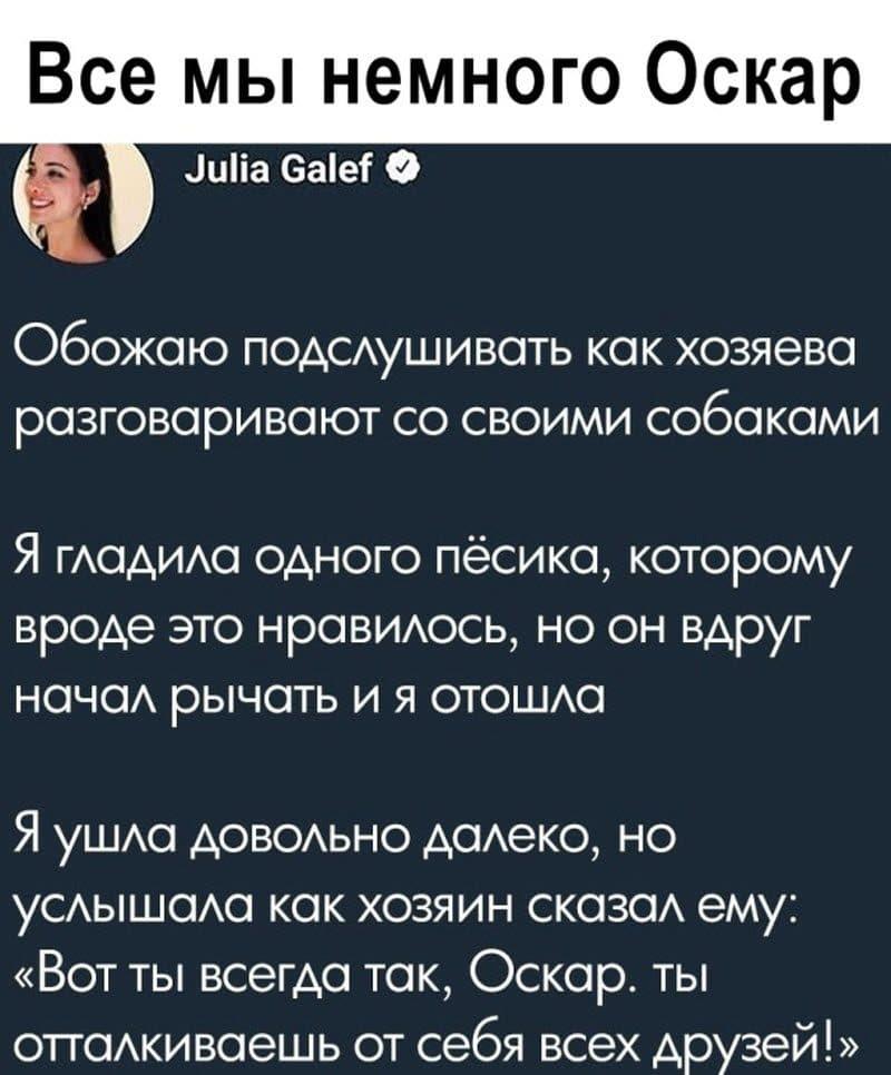 auto_12-13podb_vecher_15_6_800x966.jpg