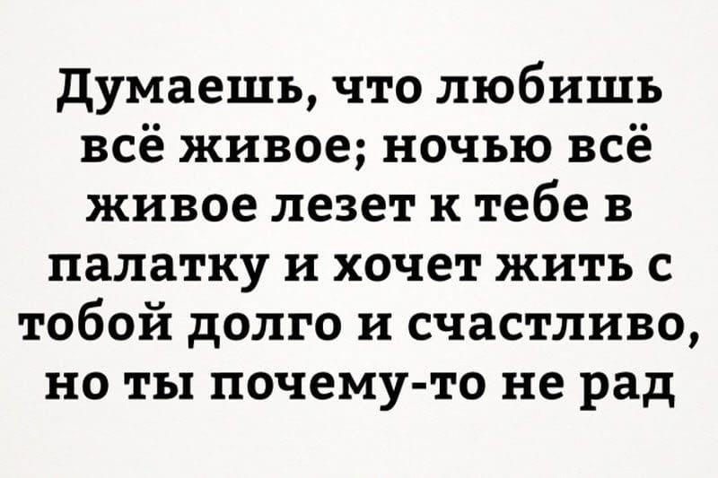 auto_13-501_7_11_800x533.jpg