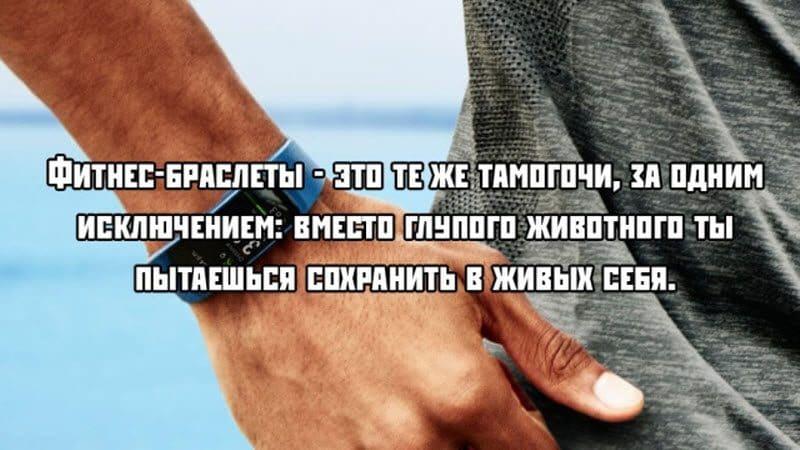 auto_15-071_11_4_800x450.jpg
