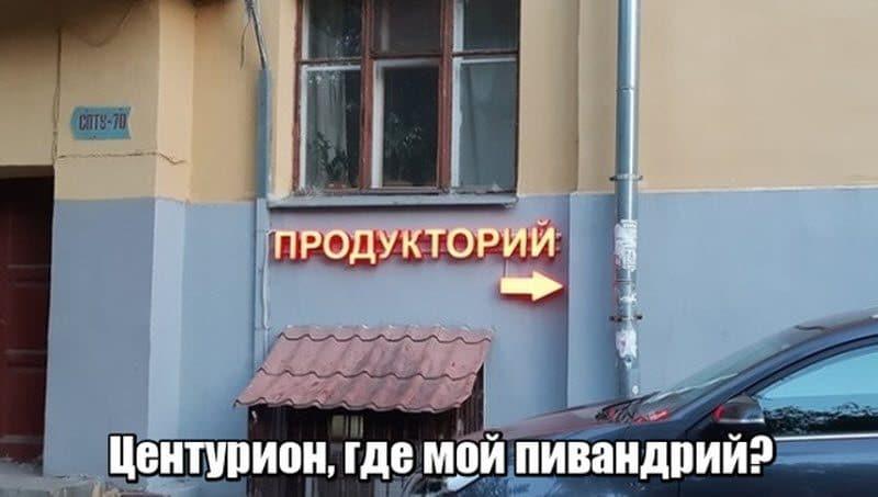 auto_17-061_13_12_800x453.jpg