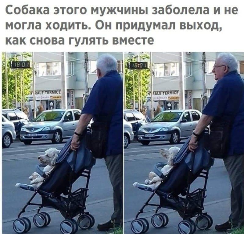 Прикольные картинки 14.06.2019