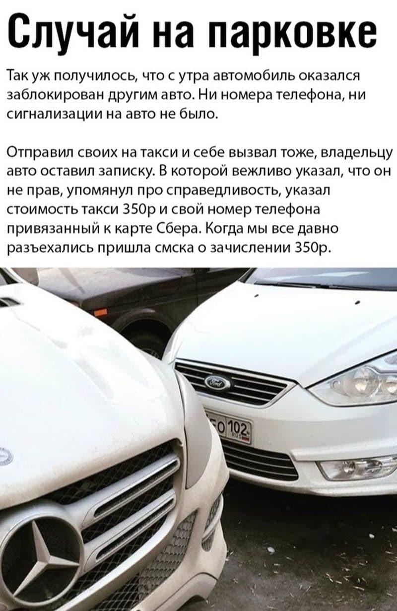 auto_17-581_18_4_800x1231.jpg