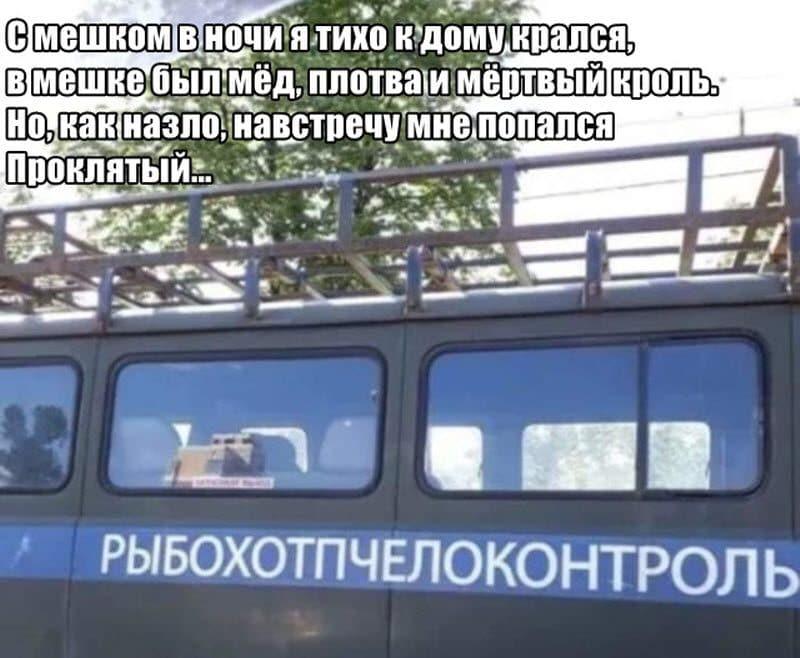 auto_17-58podb_vecher_020_800x658.jpg