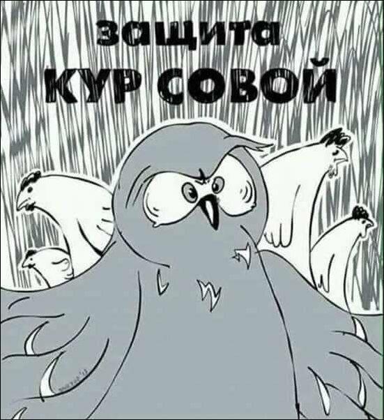 Комиксы и карикатуры прикол, сделай сам, юмор