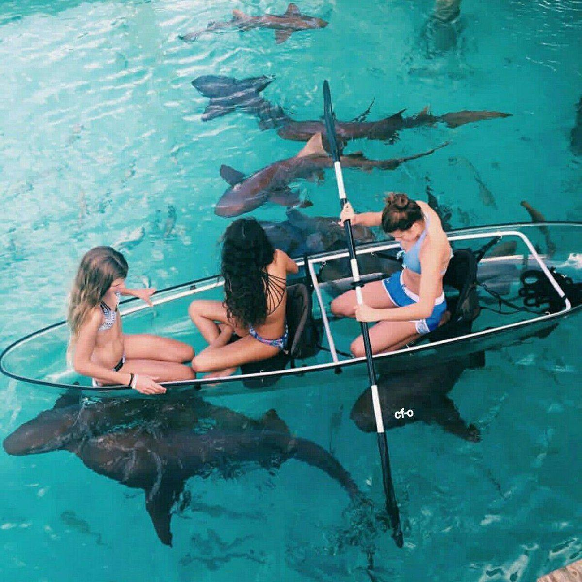 девушки в лодке и акулы