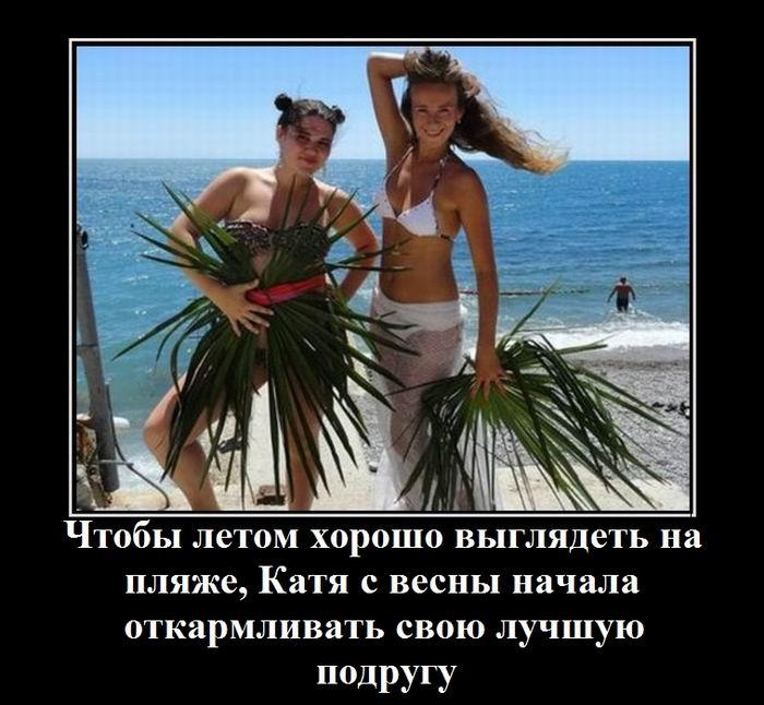 f6679d8e_resizedScaled_740to682.jpg