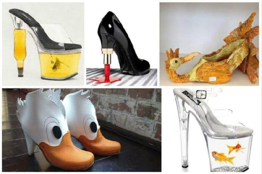смешные картинки с обувью дизайн сфера деятельности