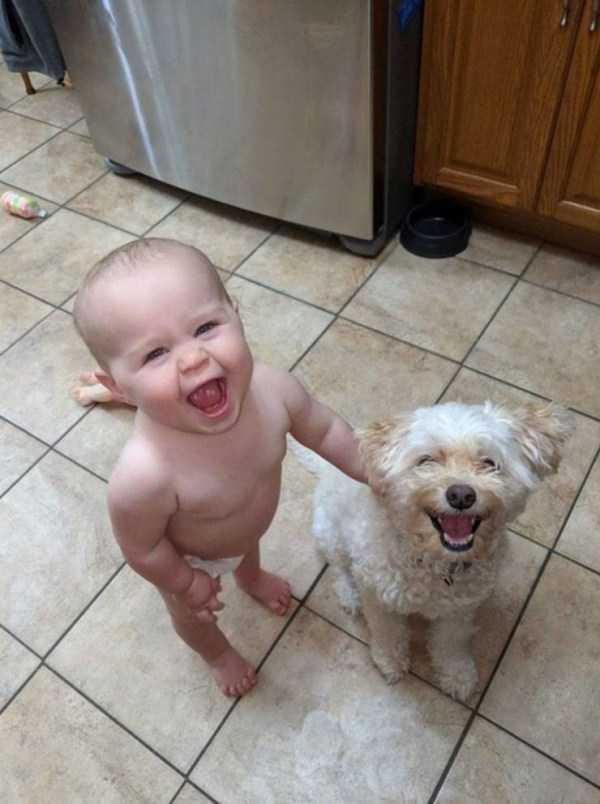 ребенок и собака улыбаются