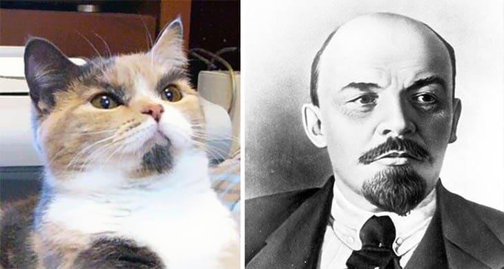 кот и ленин