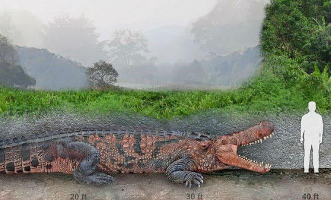 Самый огромный крокодил в истории планеты весил несколько тонн и мог охотиться на слонов