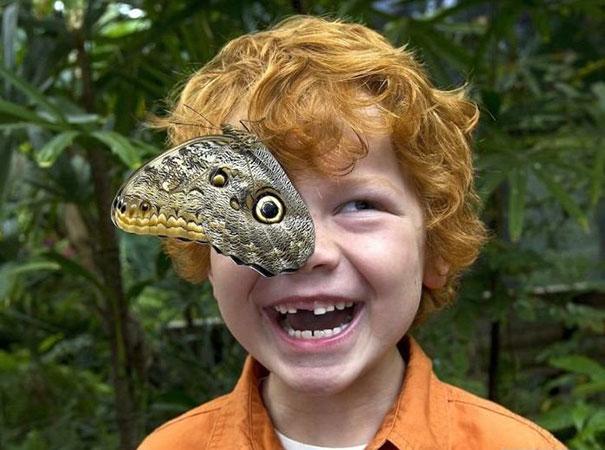 рыжеволосый мальчик с бабочкой на лице