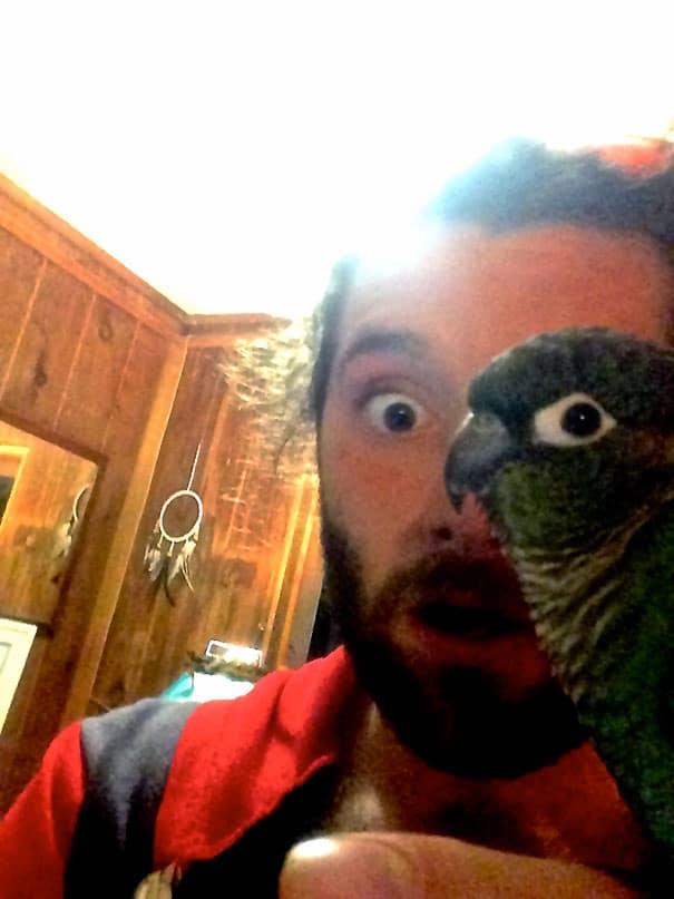 мужчина с попугаем на плече