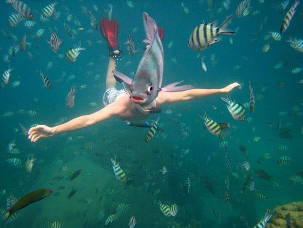 дайвер и рыбки