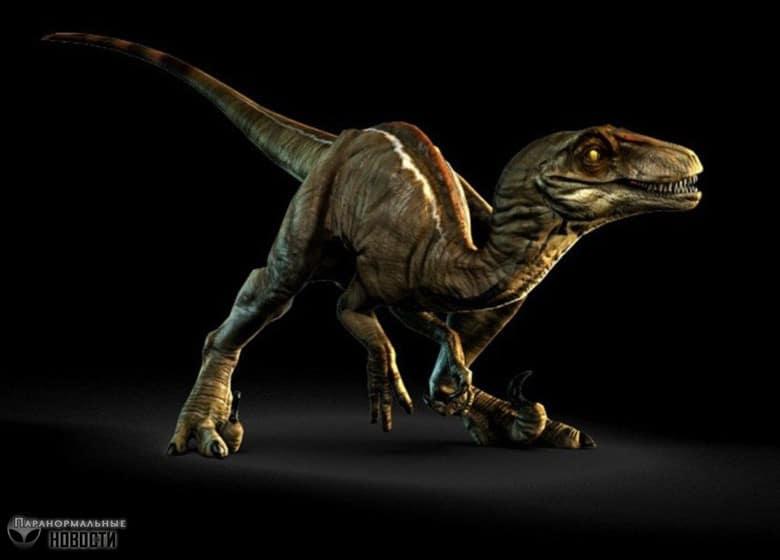 Встречи с живыми динозаврами в «зоне четырех углов» США Тайны и мифы