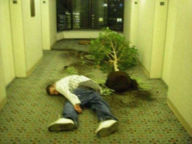 парень лежит на полу рядом с деревом