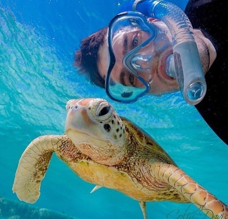 селфи дайвера с черепахой