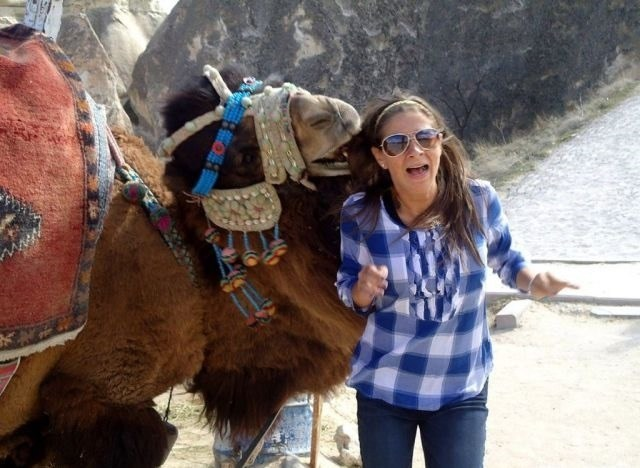 верблюд и девушка