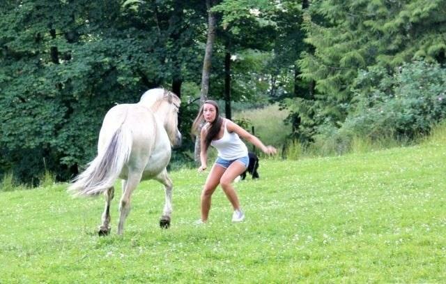 лошадь бежит на девушку