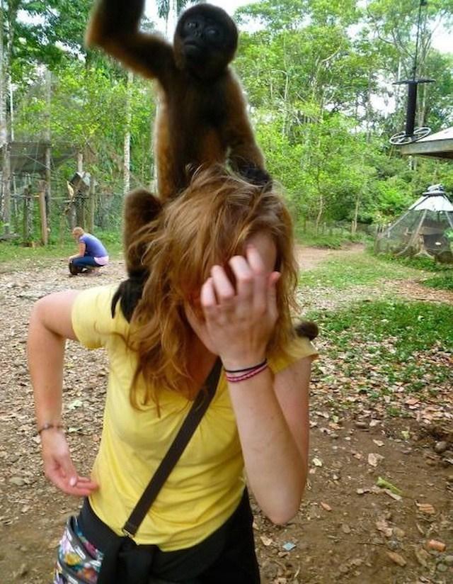 обезьяна сидит на плечах у девушки
