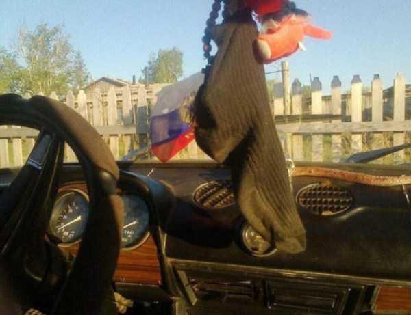 носок на стекле в авто