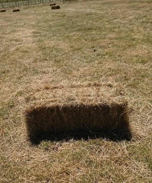 стог сена в поле