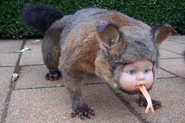 меховая игрушка с кукольным лицом