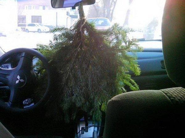 еловая ветвь в салоне авто