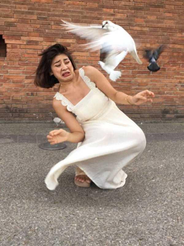 девушка испугалась голубя