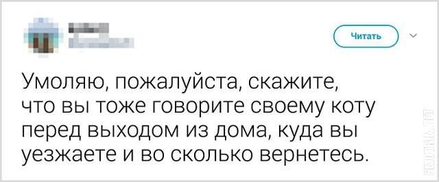 smotrim.net_chto-govoryat-svoim-koshkam-pered-uhodom_2-1