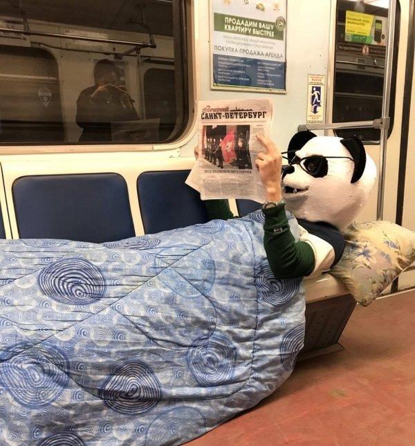 панда читает газету в метро