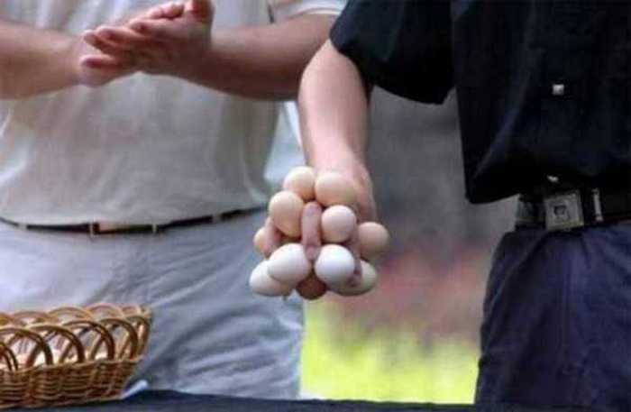 куриные яйца в руке