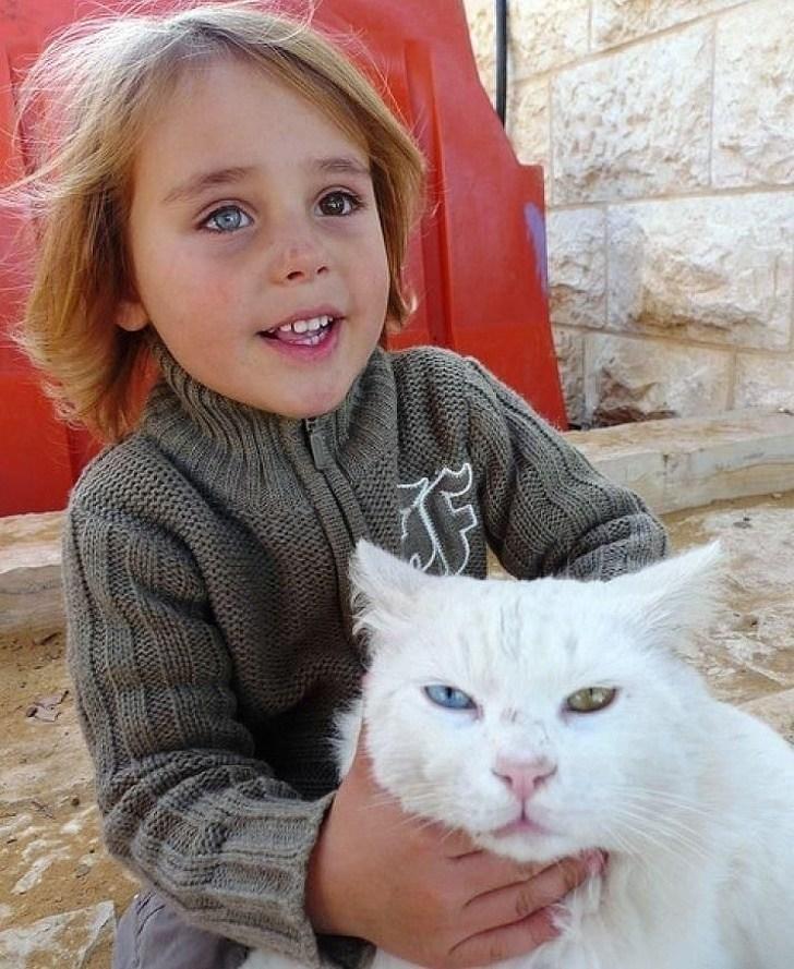 мальчик с белым котом