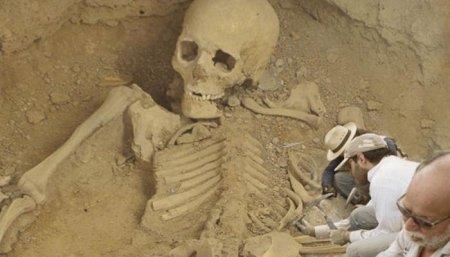 1563311476_skelet-giganta-byl-obnaruzhen-v-gobi-1