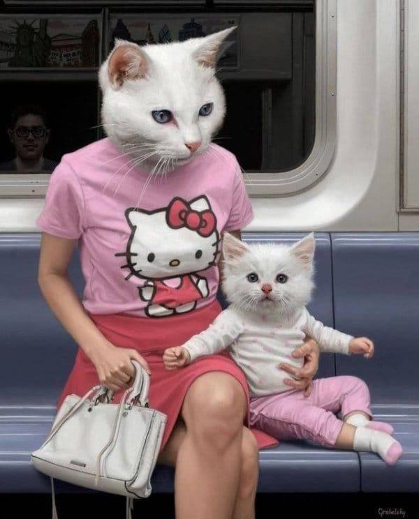 люди с головой котов