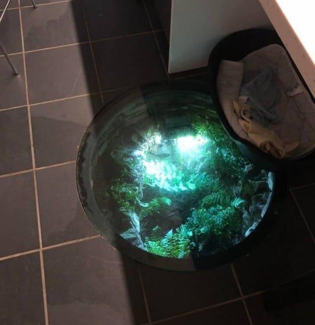 аквариум в полу